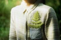 li_hui_wind_tree