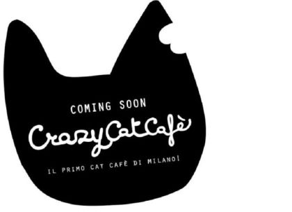 crazy-cat-cafe