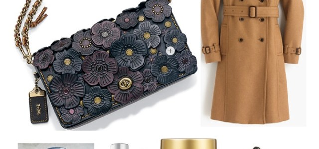Fashion to Follow Christmas gift guide, Holiday gift guide, Nordstrom sale, Burberry on slae