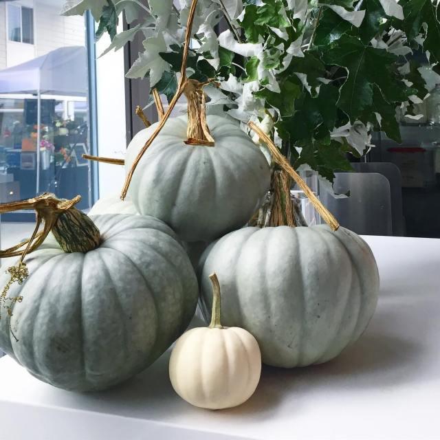 Little Brother Kirkland, White and green pumpkins fall decor