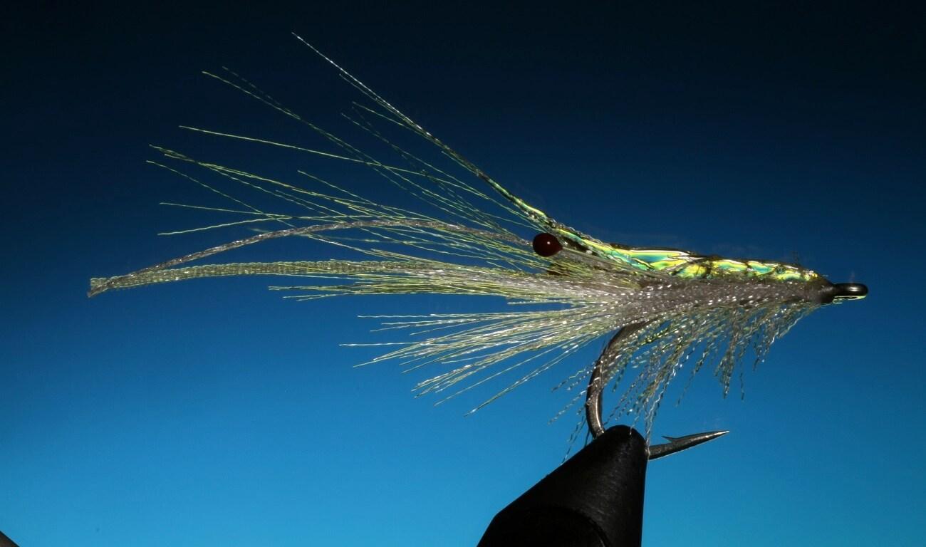 fly tying ribbon shrimp