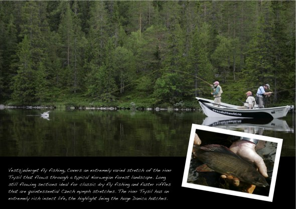 Gamefish page 10 Vestsjøberget