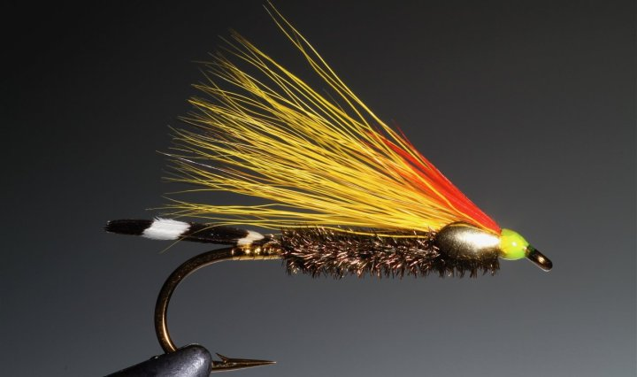 Edson Tiger fly tied by Barry Ord clarke