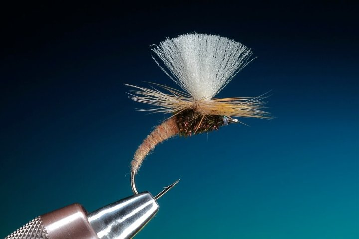 Klinkhammer fly Special tied by Barry OC