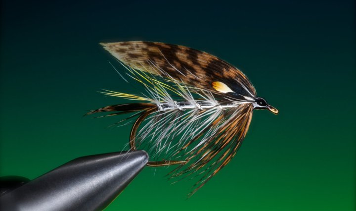 Grouse wet fly tied by Barry Ord Clarke