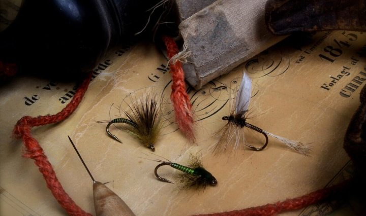 Large dark olive trio fly