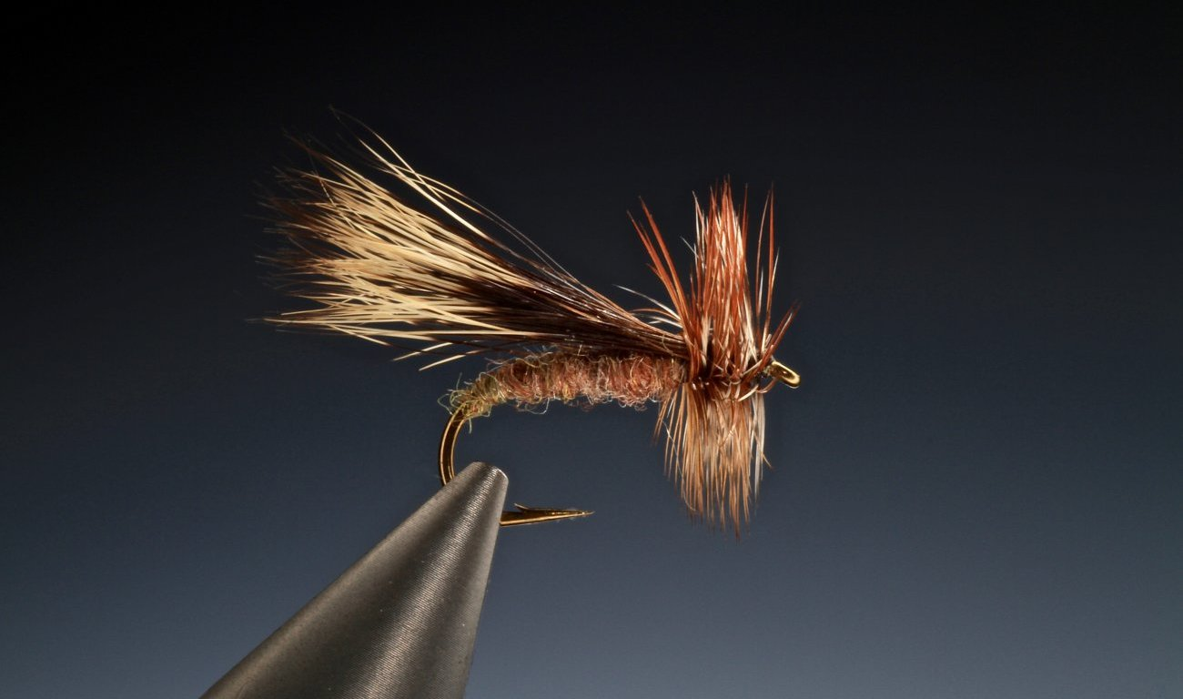 fly tying Chuck Caddis dry fly