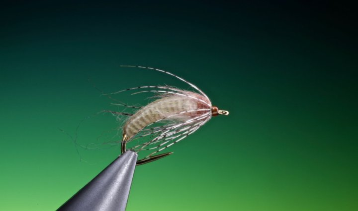 Antron caddis pupa tied by Barry Ord Clarke