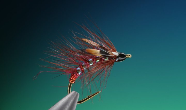 fly tying Claret snatcher wet fly
