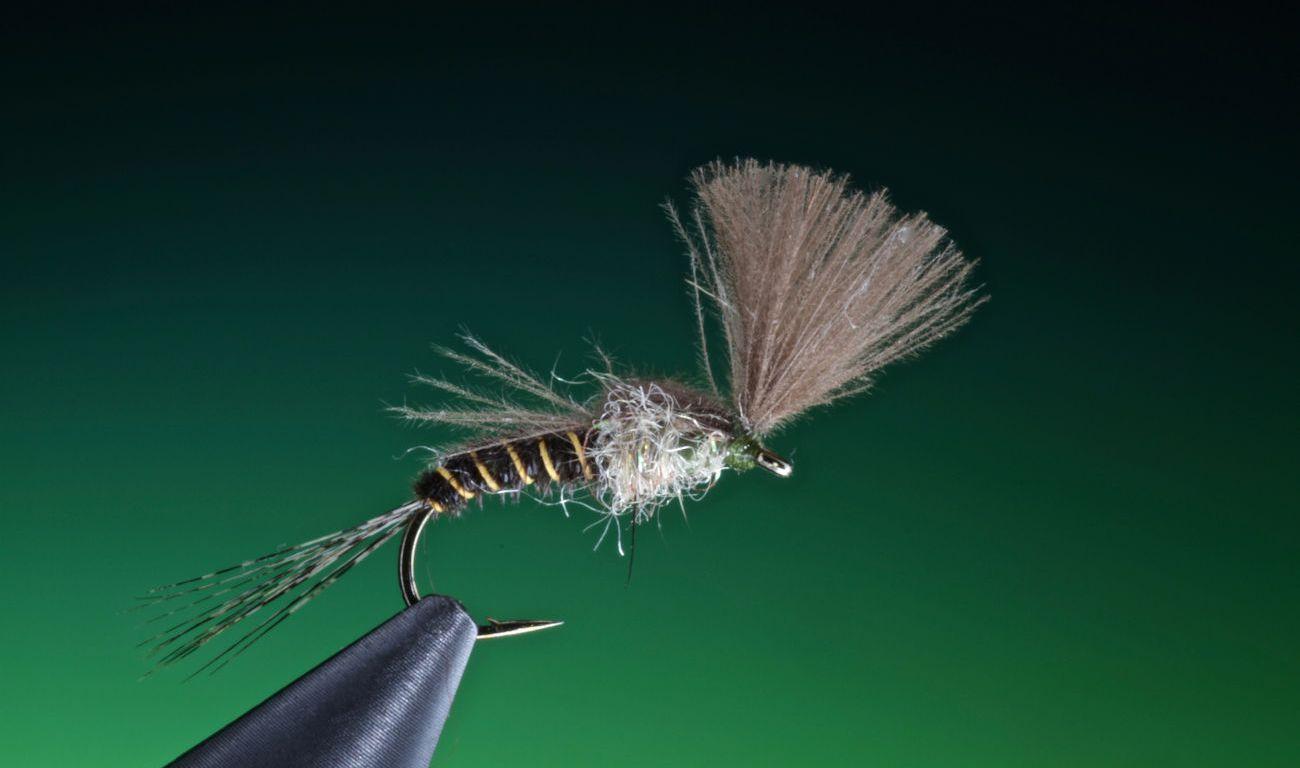 Baetis Rhodani fly emerger tied by Barry Ord Clarke