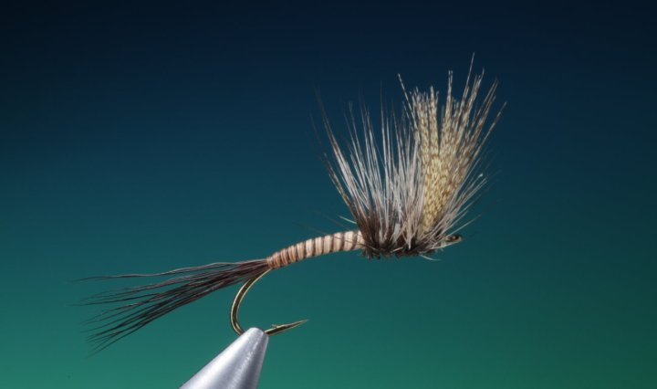 fly tying big mayfly dun