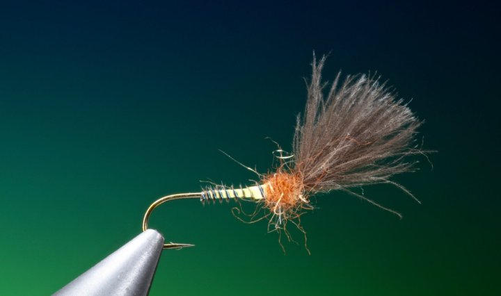 fly tying rusty owl variant emerger