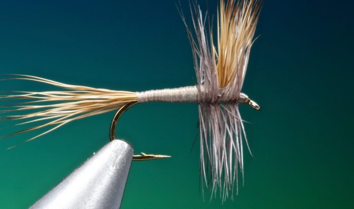 gray wulff fly tied by Barry Ord Clarke