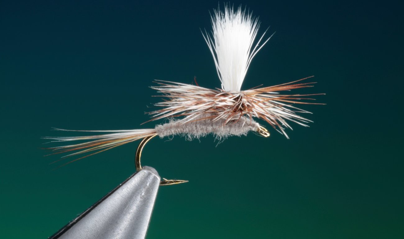 fly tying Parachute Adams dry fly