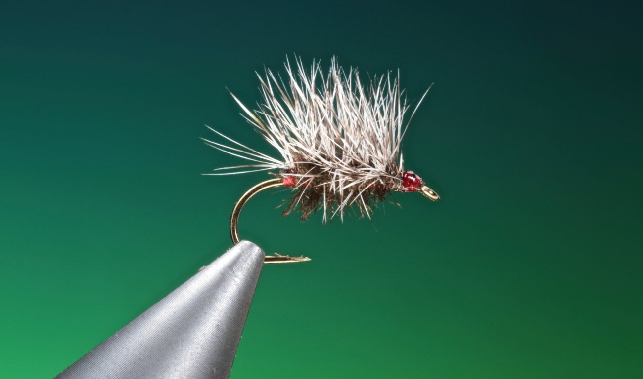 fly tying Paraloop Griffiths dry fly