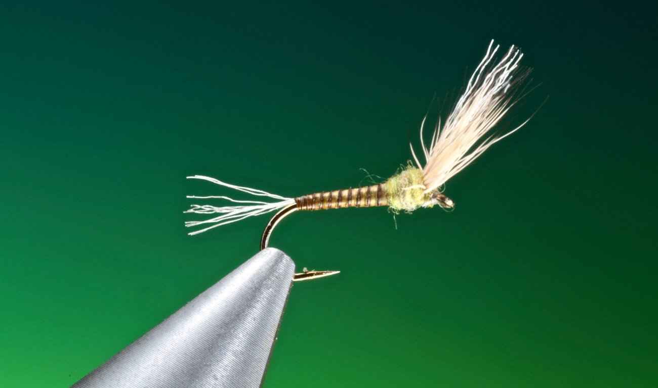 fly tying Baetis Sparkle wing emerger