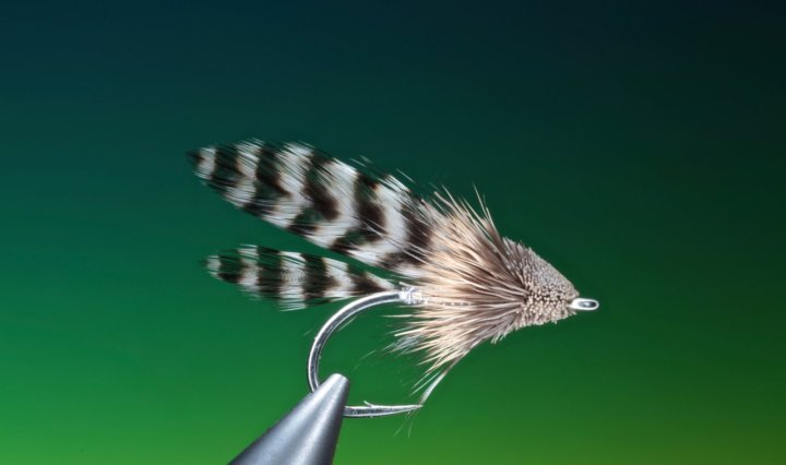 Grizzly Muddler streamer tied by Barry Ord Clarke