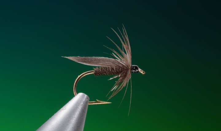 how to tie Black Gnat wet fly