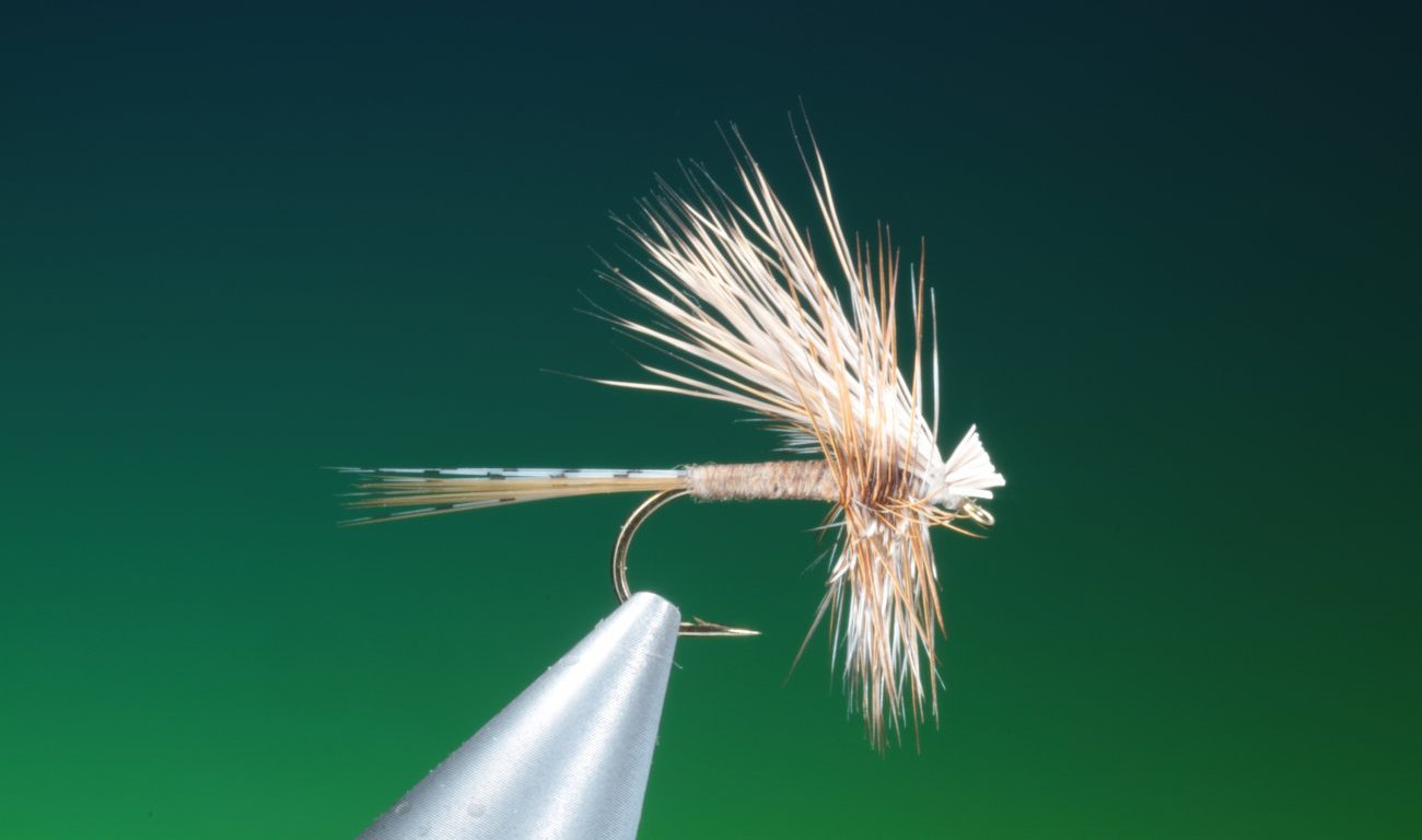Hair wing Adams dry fly tied by Barry Ord Clarke