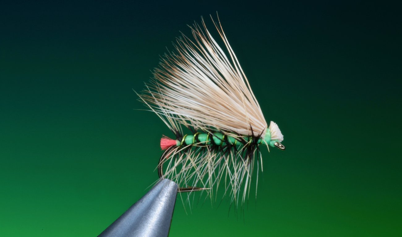 fly tying Hot Butt Caddis