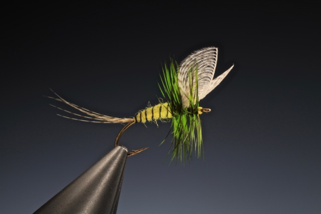 fly tying Yellow mayfly dry fly