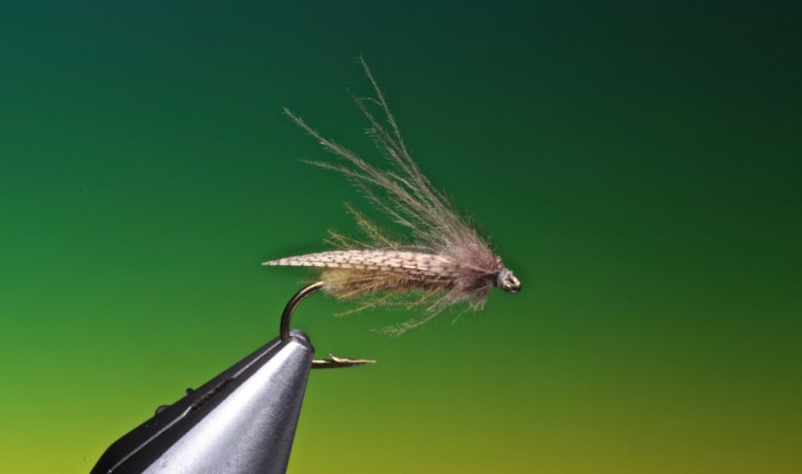 Egg laying caddis tied by Barry Ord Clarke