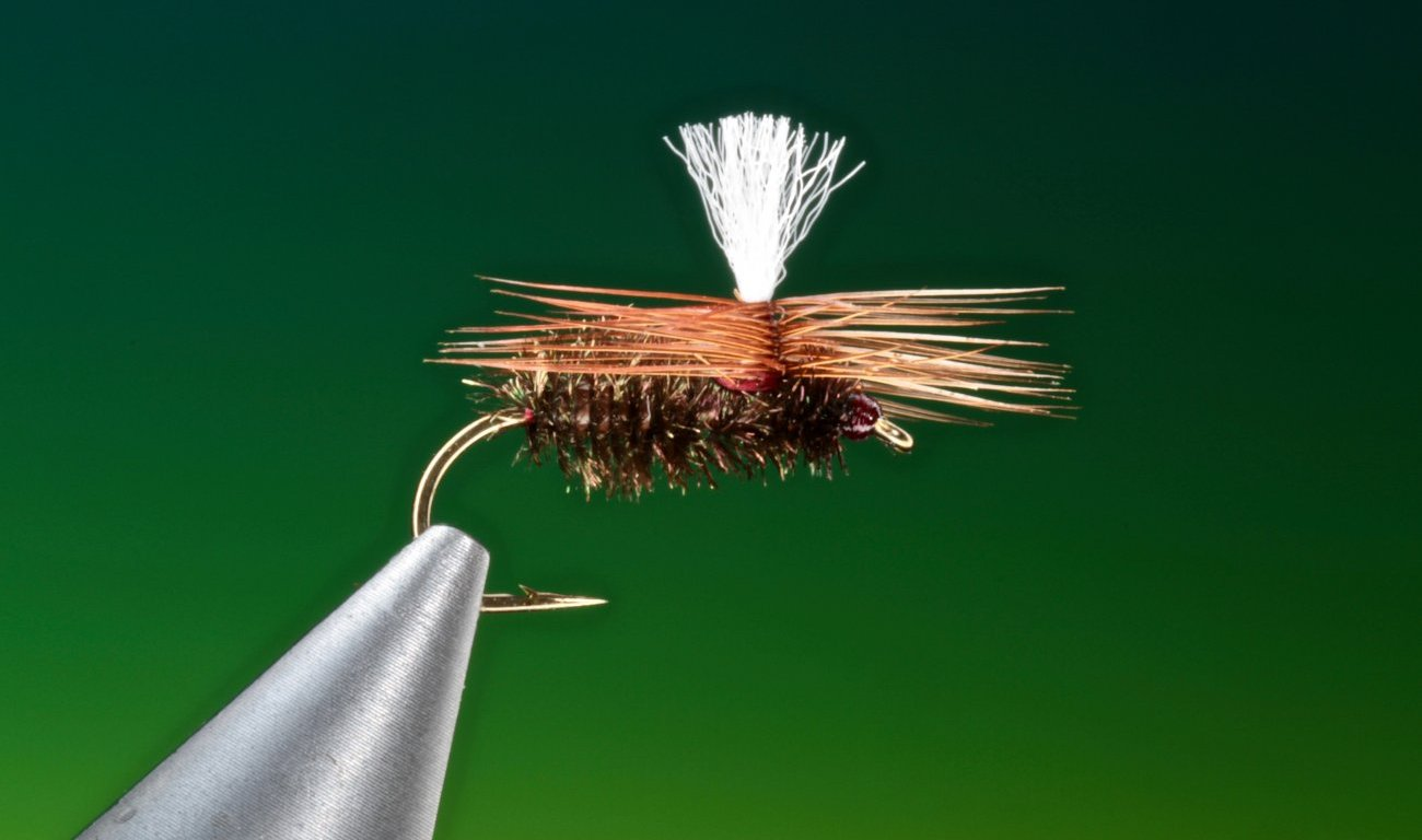 fly tying Brown & Peacock Beetle dry fly