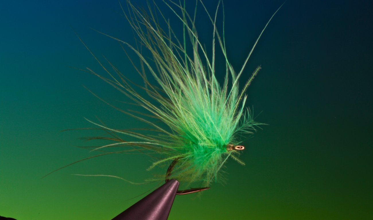 Grass Carp Salad fly tied by Barry Ord Clarke