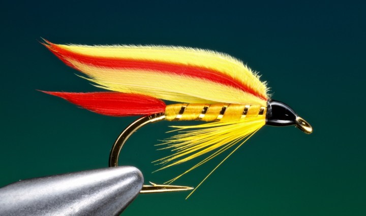 fly tying Colonel Fuller wet fly