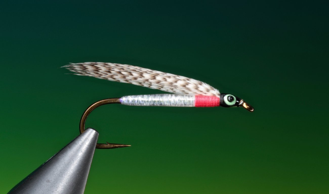 fly tying Sinfoil's Fry, a bait fish streamer