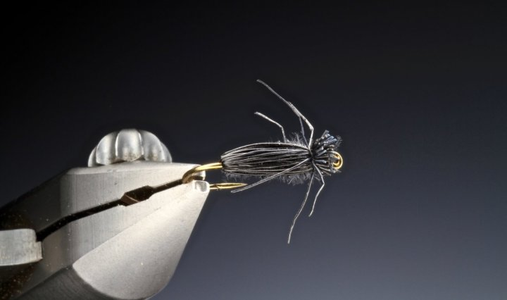 fly tying The Beetle Bug
