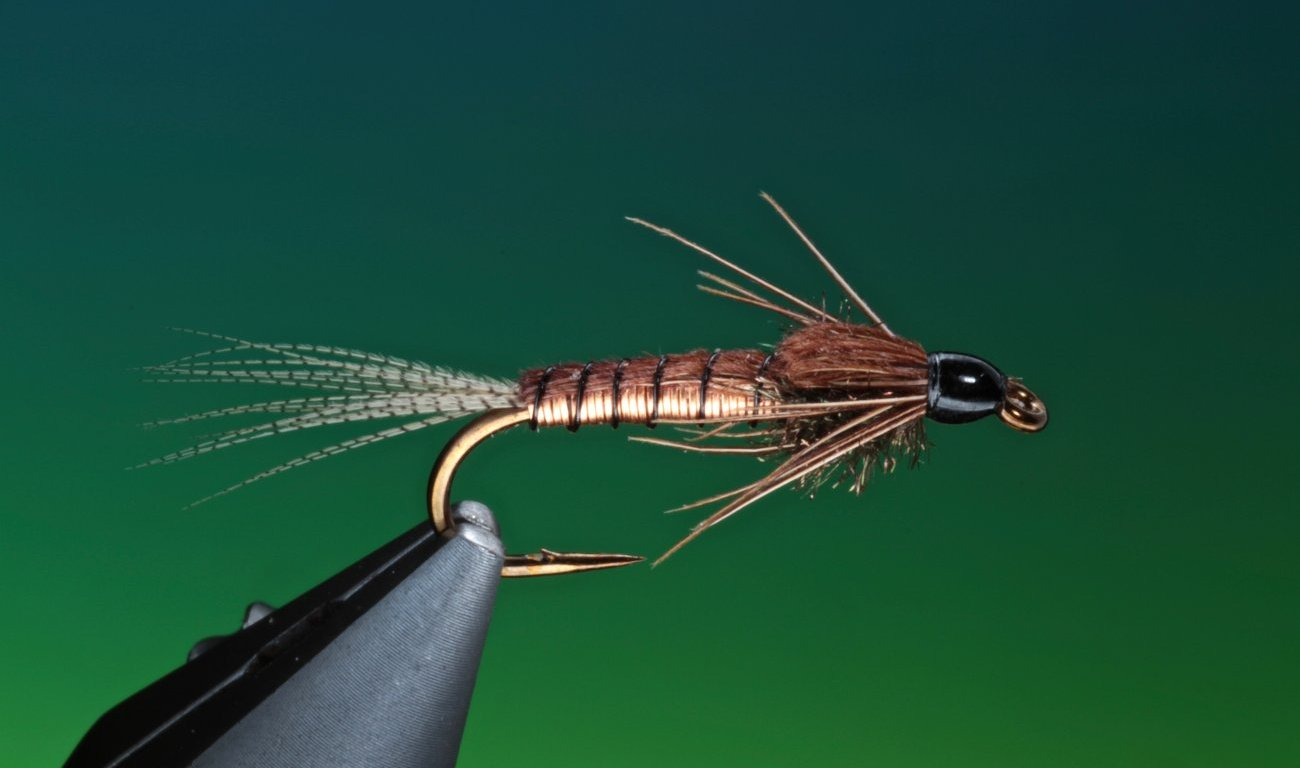 Copper Nymph