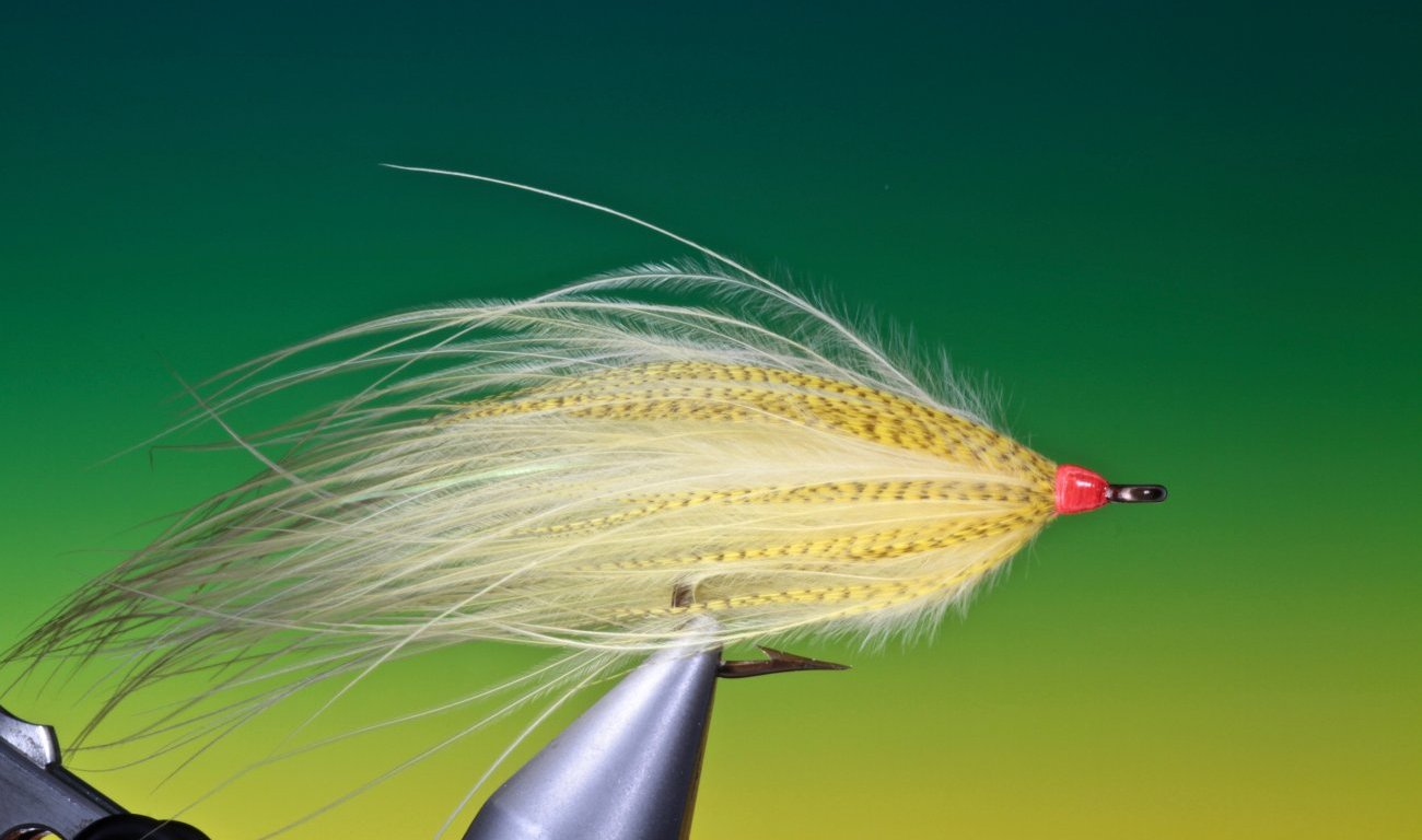 fly tying Soft hackle Streamer