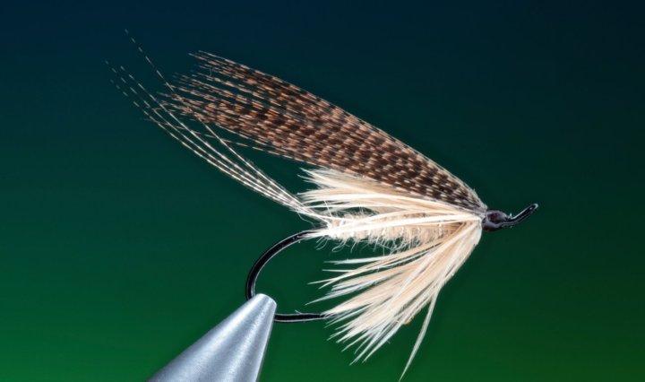 fly tying mayfly wet