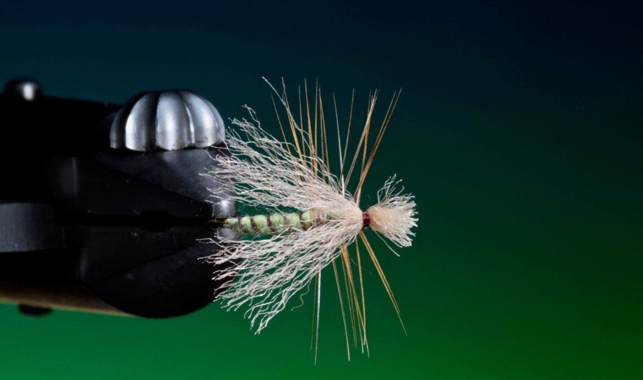 How to tie Poly wing caddis