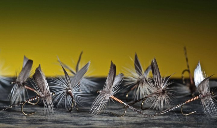 fly tying Mallard slip wings dry fly