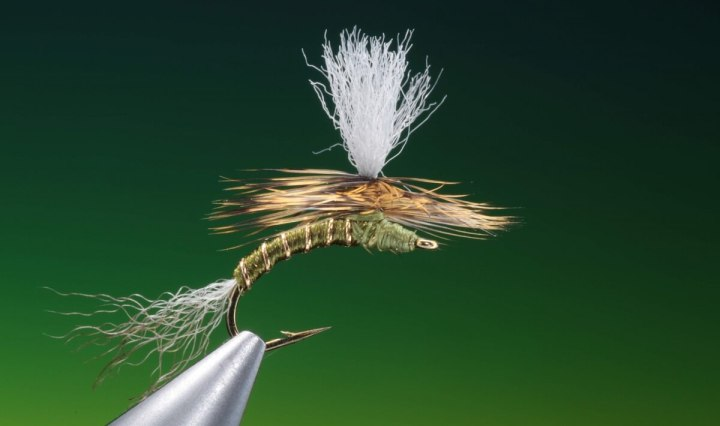 fly tying John Goddard emerger