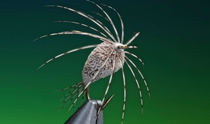 Strawman fly tied by Barry Ord Clarke
