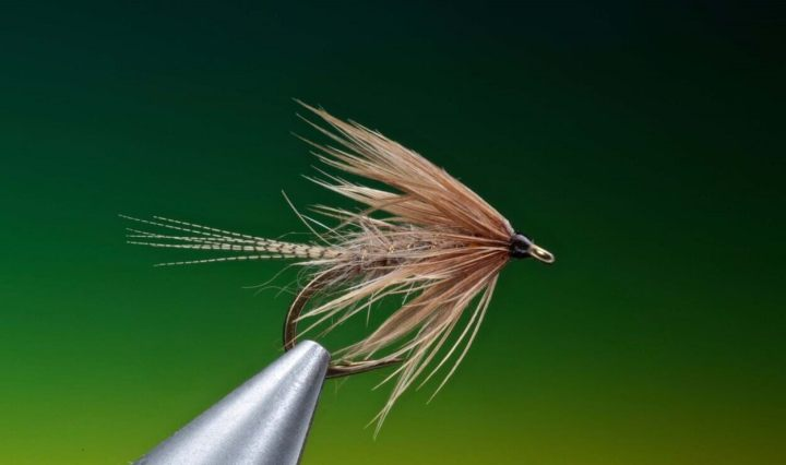 hares ear soft hackle tied by Barry Ord Clarke