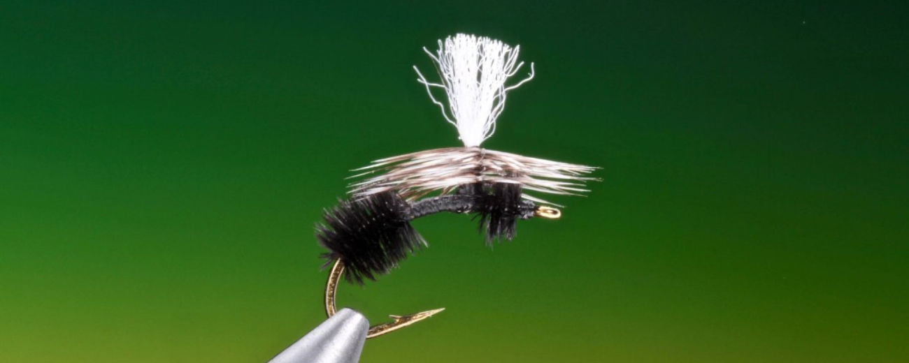 parachute ant fly pattern tied by Barry Ord Clarke