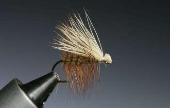 Elk-Hair-Caddis tied by Barry Ord Clarke