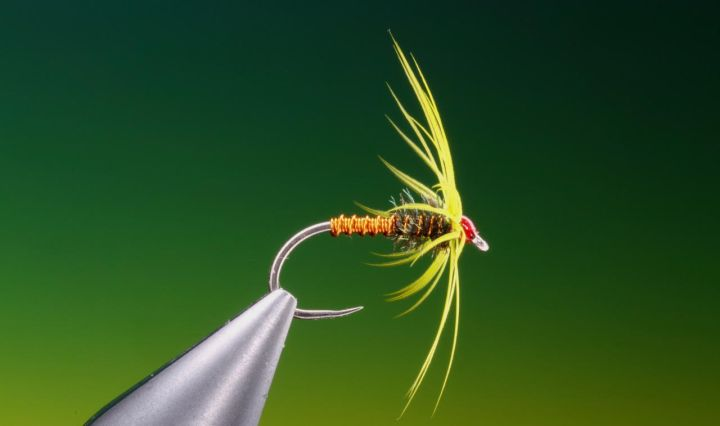Soft hackle wet fly tied by Barry Ord Clarke