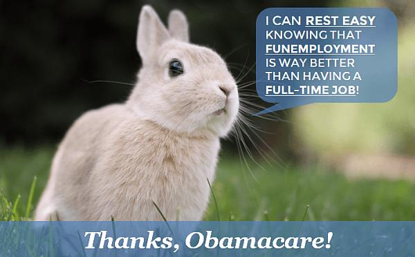 BunnyFunemployment