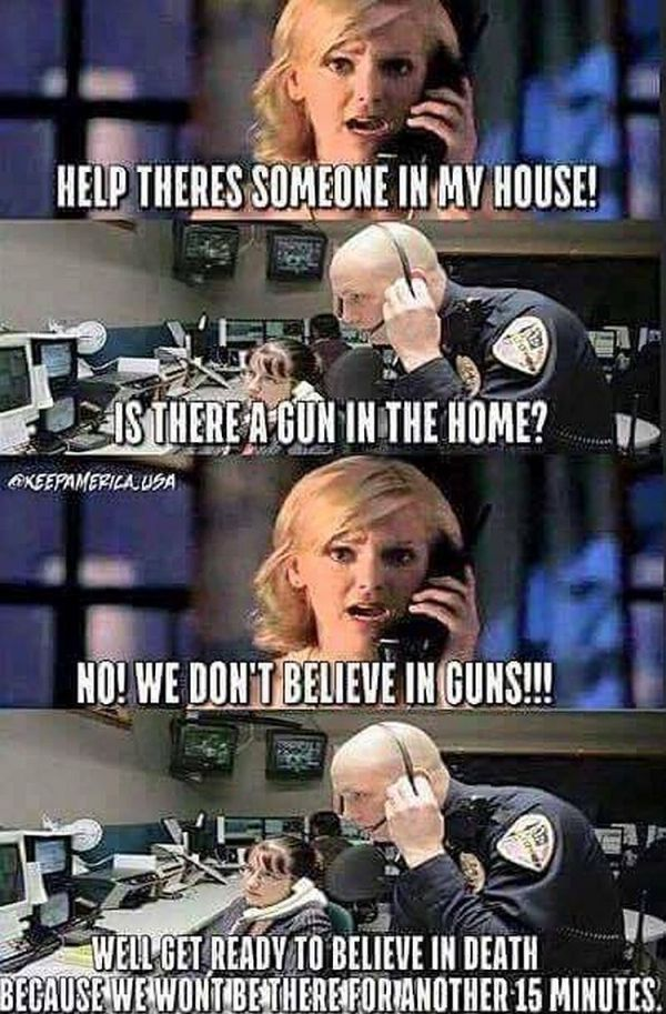 Gun Control Loving Liberals PUT IN THEIR PLACE by ONE MEME