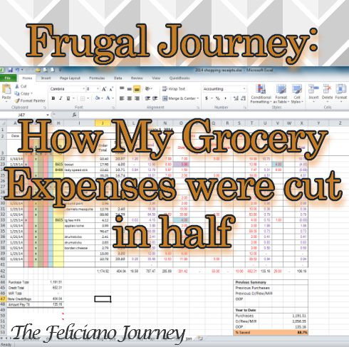 The Feliciano Journey frugal-journey-groceries