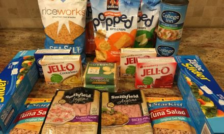 Publix Shopping Trip 1/29/16 – $9.00