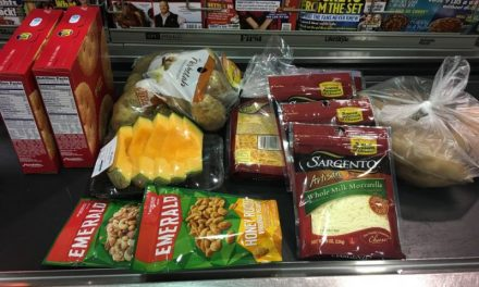 Publix Shopping Trip 11/17/16 – $21.71 from $48.84