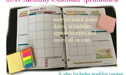 2017 Free Monthly Calendar Printable (Portrait option)