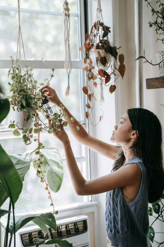 Asian woman tending to her plants at home | The Female Culture