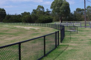 black PVC chainmesh sports oval fence